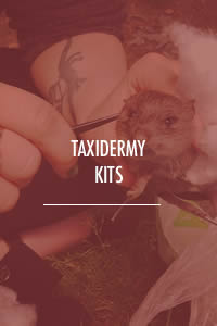 Taxidermy Kits
